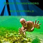 ROINE SANGENBERG Water World album cover