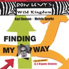 RON LEVY Finding My Way album cover