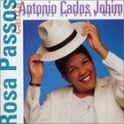 ROSA PASSOS Rosa Passos Canta Antonio Carlos Jobim album cover