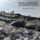 ROSS HAMMOND Ross Hammond & Sameer Gupta : Mystery Well album cover