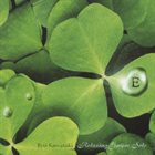 RYO KAWASAKI E: Relaxing Guitar Solo album cover