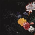 SABIR MATEEN Sabir Mateen, Sirone, Andrew Barker : Infinite Flowers album cover