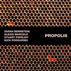 SARAH BERNSTEIN Propolis album cover