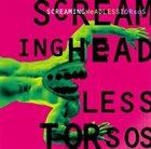 SCREAMING HEADLESS TORSOS Screaming Headless Torsos (aka 1995) album cover