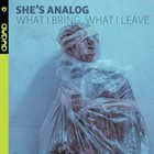 SHE'S ANALOG What I Bring, What I Leave album cover