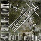 SLY AND ROBBIE Remember Precious Times album cover