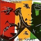 SLY AND ROBBIE The Summit album cover