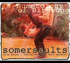 SOMERSAULTS (OLIE BRICE / TOBIAS DELIUS / MARK SANDERS) Numerology of Birdsong album cover