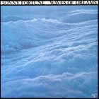 SONNY FORTUNE Waves Of Dreams album cover
