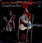 SONNY TERRY & BROWNIE MCGHEE Going Down Slow album cover