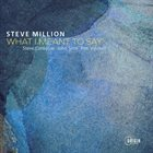 STEVE MILLION What I Meant to Say album cover