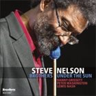 STEVE NELSON Brothers Under The Sun album cover