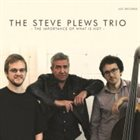 STEVE PLEWS The Steve Plews Trio : The Importance Of What Is Not album cover