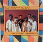 SWEET HONEY IN THE ROCK Feel Something Drawing Me On album cover