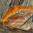 SZILÁRD MEZEI 13 Woodpecker album cover