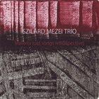SZILÁRD MEZEI Materra (old songs retrospective) album cover