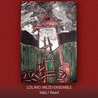 SZILÁRD MEZEI Nád / Reed album cover