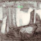 SZILÁRD MEZEI Szilard Mezei Ensemble : Dob / Drum album cover
