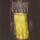 SZILÁRD MEZEI Szilárd Mezei International Improvisers Ensemble : Karszt album cover