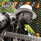 TAJ MAHAL World Blues album cover