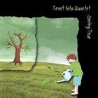 TEVET SELA Coming True album cover