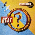 THE BEAT (THE ENGLISH BEAT) What Is Beat? album cover