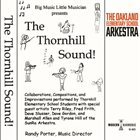 THE OAKLAND ELEMENTARY SCHOOL ARKESTRA The Thornhill Sound album cover