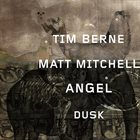 TIM BERNE Tim Berne / Matt Mitchell : Angel Dusk album cover