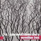 TOMASZ DĄBROWSKI 3 D - Dąbrowski , Davis , Drury  : Vermilion Tree album cover