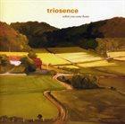 TRIOSENCE When You Come Home album cover