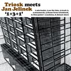 TRIOSK Triosk Meets Jan Jelinek ‎: 1+3+1 album cover
