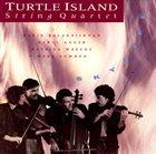 TURTLE ISLAND STRING QUARTET Skylife album cover