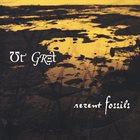 UT GRET Recent Fossils album cover
