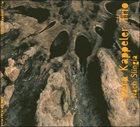 VERA KAPPELER Nach Slingia album cover