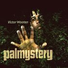 VICTOR WOOTEN Palmystery album cover