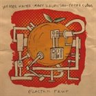 WEASEL WALTER Electric Fruit (with Mary Halvorson & Peter Evans ) album cover