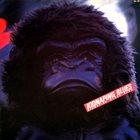 YOSUKE YAMASHITA Kidnaping Blues album cover