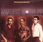 YOSUKE YAMASHITA Yosuke Yamashita Trio : Montreux Afterglow album cover
