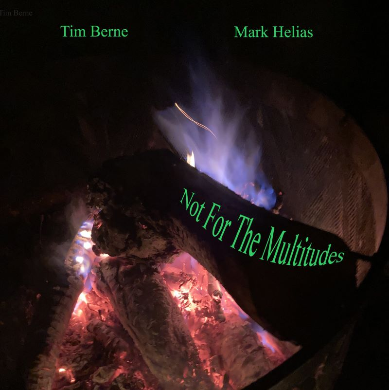 TIM BERNE - Tim Berne / Mark Helias : Not For The Multitudes cover