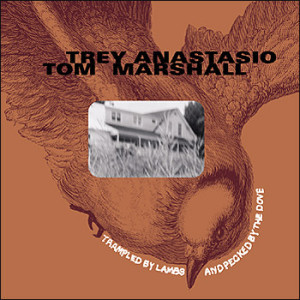 TREY ANASTASIO - Trey Anastasio, Tom Marshall : Trampled By Lambs & Pecked By The Dove cover