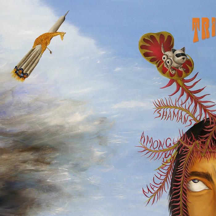 TRIPLEX - Shamans Among Machines cover