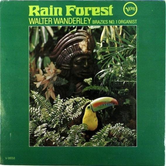 WALTER WANDERLEY - Rain Forest cover