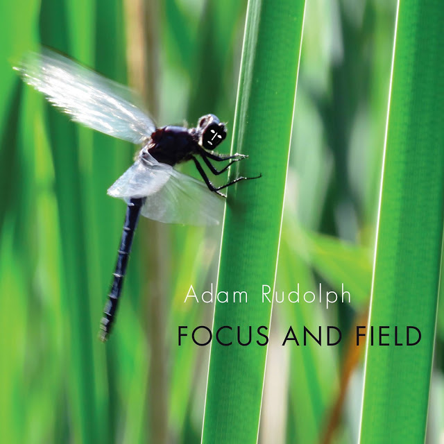 ADAM RUDOLPH / GO: ORGANIC ORCHESTRA - Focus and Field cover