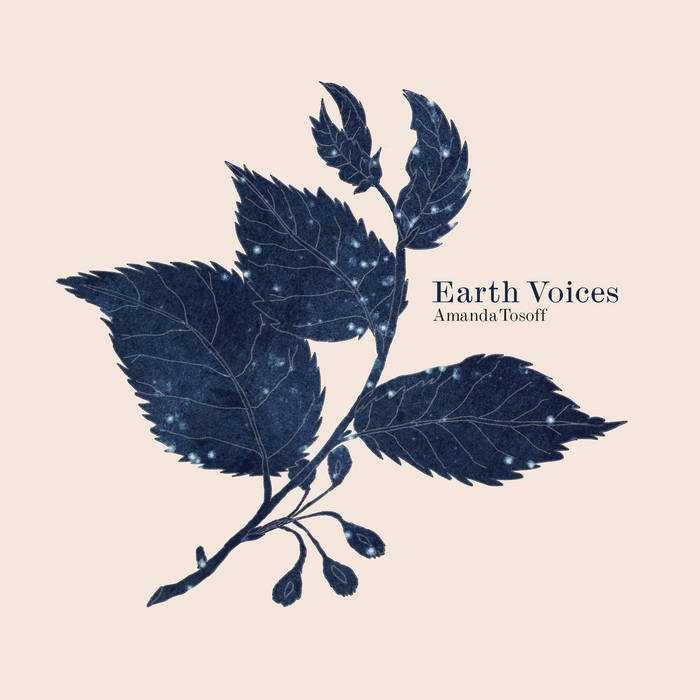 AMANDA TOSOFF - Earth Voices cover