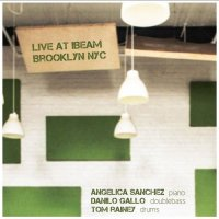 ANGELICA SANCHEZ - Angelica Sanchez, Danilo Gallo, Tom Rainey : Live At Ibeam, Brooklyn NYC 2011 cover