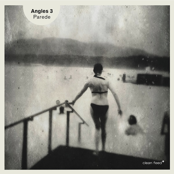 ANGLES - Angles 3 : Parede cover
