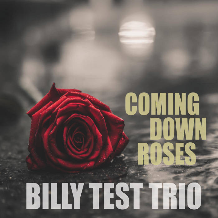 BILLY TEST - Coming Down Roses cover