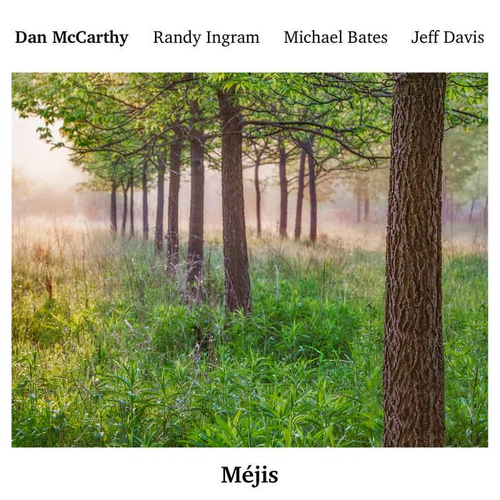 DAN MCCARTHY - Méjis cover
