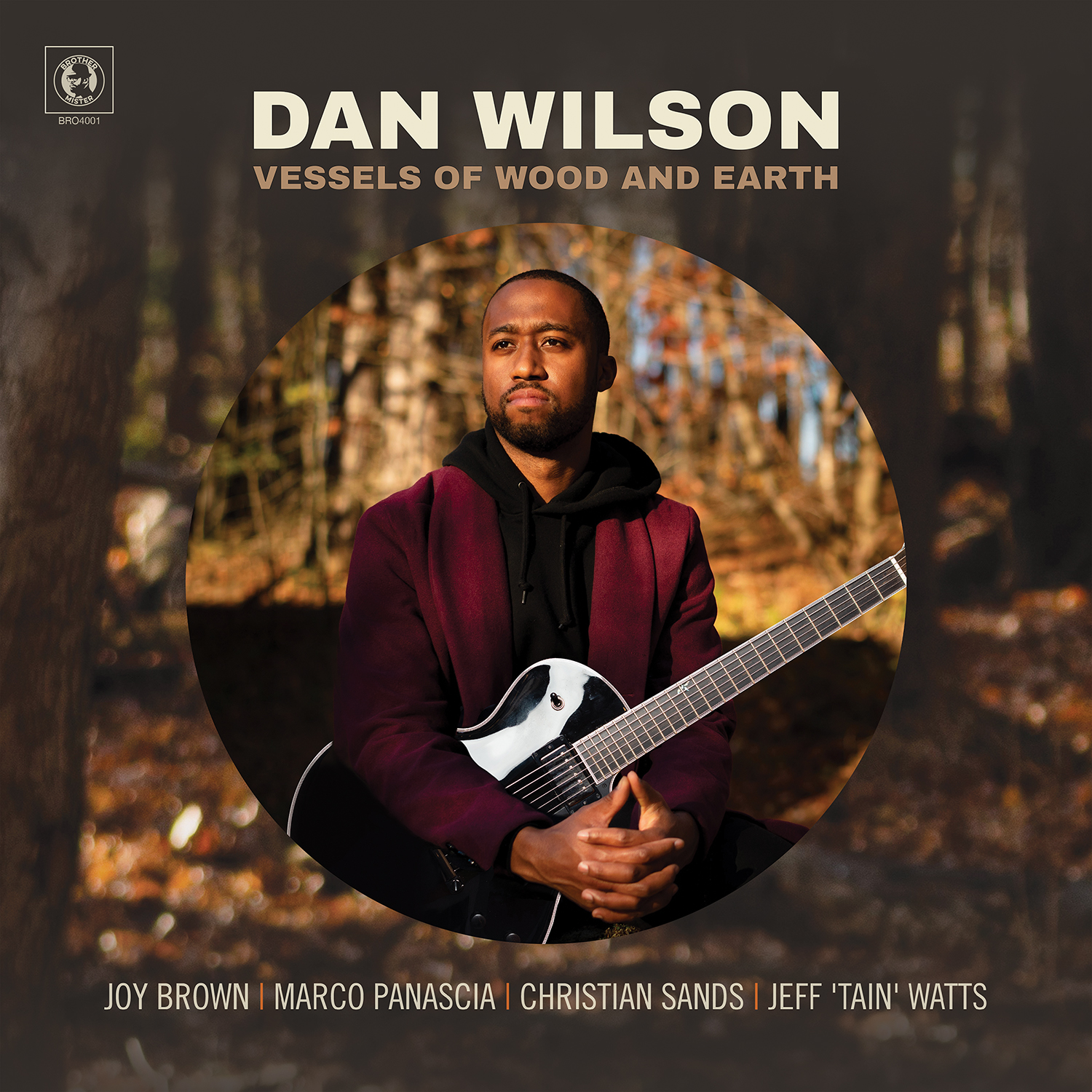 DAN WILSON - Vessels of Wood and Earth cover