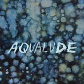 DANA LYN - Aqualude cover